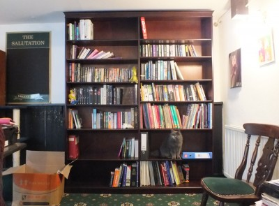 bookcase-installed