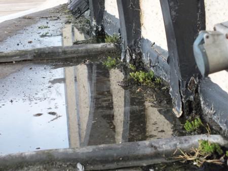 puddle-on-bay